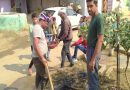 हीरावाड़ी स्वामी विवेकानंद युवा मंडल ने चलाया  गांव मे सफाई अभियान